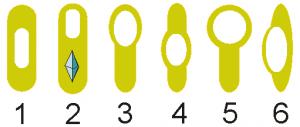 jenis-jenis endospora bakteri